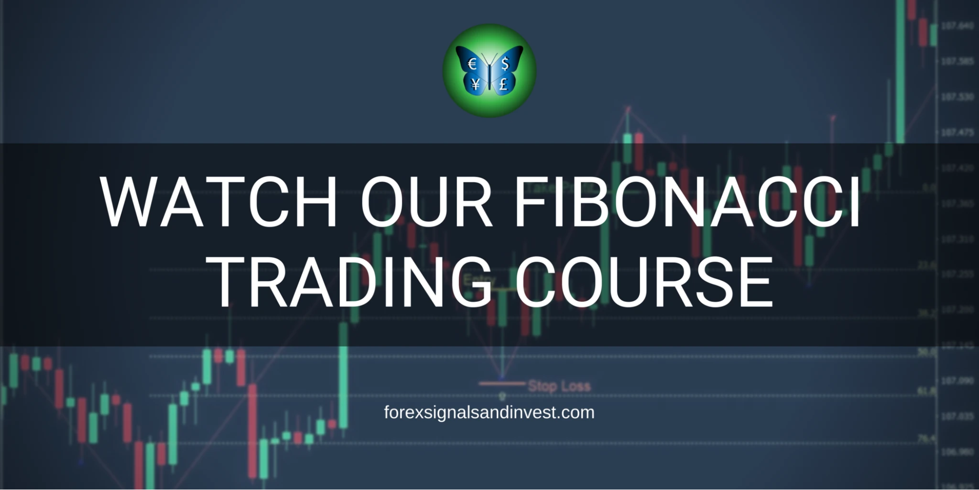 ForexSignalsandInvest Courses and educational materials