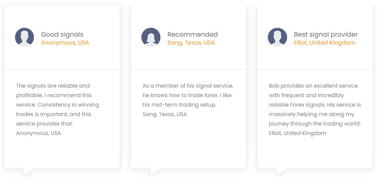 1000pipBuilder Customer Reviews