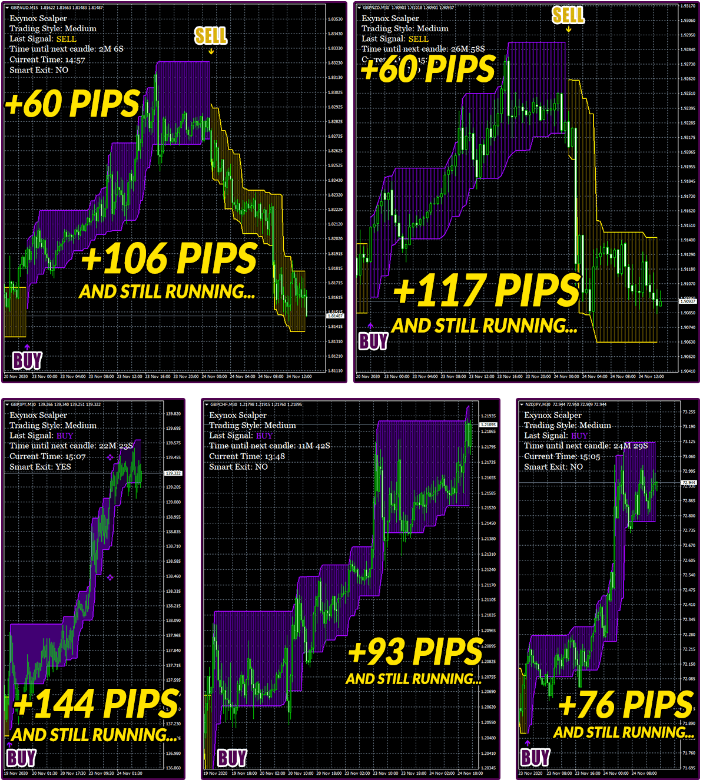 Exynox Scalper Trading Results