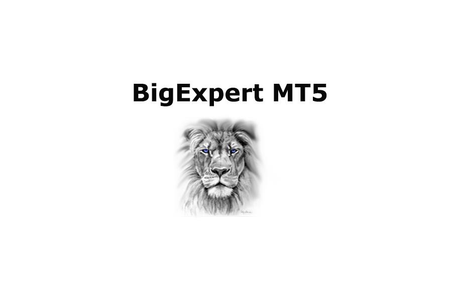 BigExpert MT5 Review