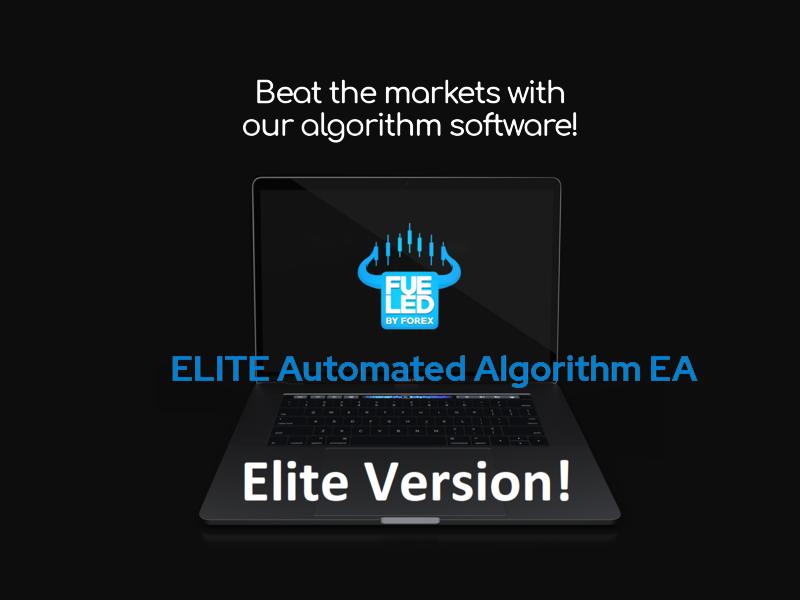 Elite Automated Algorithm EA Review