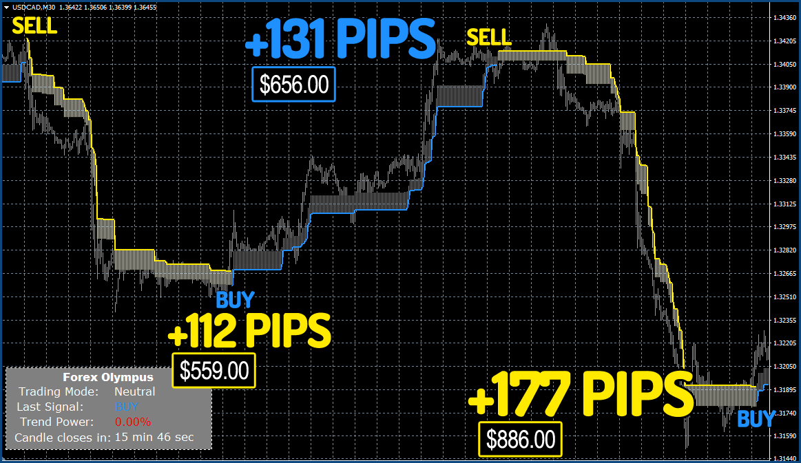 Forex Olympus - Trading Results